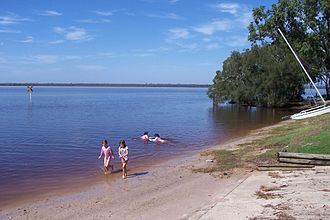Lake Cootharaba - Main Beach, Boreen Point (Note dark tannin discolouration of the water).