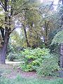 Botanička bašta Jevremovac 005.JPG