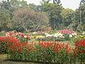 Botanical Garden Dhaka Bangladesh 1.JPG