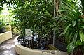 Botanical garden T.U.Delft in 2015 70.JPG