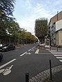 Boulevard Albert-Thomas.jpg