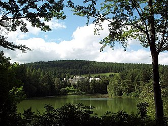 Bowhill House - Bowhill House across the Upper Loch