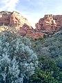 Boynton Canyon Trail, Sedona, Arizona - panoramio (26).jpg