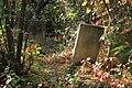 Briceni Jewish Cemetery 69.JPG