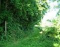 Bridleway near Tibthorpe - geograph.org.uk - 1395416.jpg