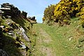 Bridleway onto the mountain - geograph.org.uk - 1901932.jpg