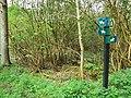Bridleways and footpath, West Woods, near Marlborough - geograph.org.uk - 789250.jpg