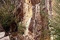 Briggs Bluff Walk, Grampians National Park, Victoria Australia (4871020763).jpg