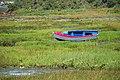 Brillac-bateau 0708A.jpg