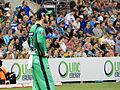 Brisbane Heat vs Melbourne Stars T20 18.jpg