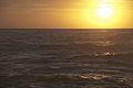 Bronte Sunrise (7960954428).jpg