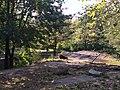 Bronx Zoo - NY - USA - panoramio (6).jpg