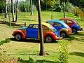 Brumadinho MG Brasil - Inhotim - panoramio (5).jpg