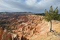 Bryce Canyon USA october 2012 c.jpg