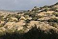 Bsaira District, Jordan - panoramio (58).jpg