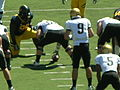 Buffaloes on offense at Colorado at Cal 2010-09-11 5.JPG