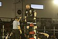 Bully Ray in ROH.jpg
