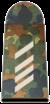 Portões 50px-Bundeswehr-OR-4-SG