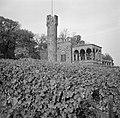 Burg Schwarzenstein op de Johannisberg bij Geisenheim, Bestanddeelnr 254-4245.jpg