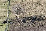 Buxton Lime Kilns 982.JPG