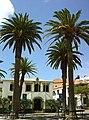 Câmara Municipal de Porto Santo - Portugal (2847297779).jpg