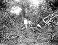 COLLECTIE TROPENMUSEUM Drie mannen met kanonnen te Maluhu aan de Tenggarong Rivier Koetai Oost-Borneo TMnr 10007665.jpg