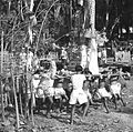 COLLECTIE TROPENMUSEUM Transport van een lijkentoren tijdens een crematie op Bali TMnr 60030669.jpg