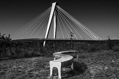 Cable-stayed bridge (tuibrug) 06.jpg