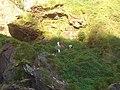 Cachoeira de Casca Danta (540098423).jpg