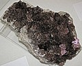 Calcite (Irving Materials Incorporated Quarry, Anderson, Indiana, USA) 1.jpg