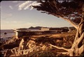 California - Carmel Beach - NARA - 543336.tif