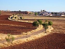 Camino a Torre de Juan Abad (45825745021).jpg