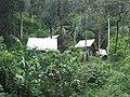 Camp Marojejia 03.jpg