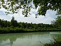Canal de Chelles - panoramio (4).jpg