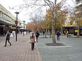 Canberra ACT 2601, Australia - panoramio (22).jpg