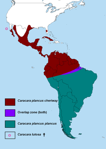 Map showing range of the genus Caracara