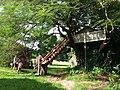 Casa na árvore do Oricó - Sitio do Paulo Marrafão - panoramio.jpg