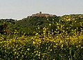 Casalbore viewed from Miscano Valley.jpg