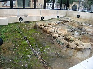 "Abyla - Phoenician ruins of ""Abyla"""