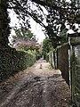 Chemin des Oiseleurs2.jpg