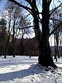 Chernivtsi Arboretum 05.jpg