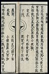 Chinese-Japanese Pulse Image chart; Full Pulse (shimai) Wellcome L0039540.jpg