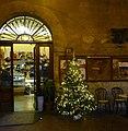 Christmas Tree in Massa Marittima.jpg
