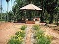 Chulannur Peafowl Sanctuary - panoramio (8).jpg