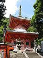 Chyogosonshiji tahoto.jpg