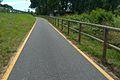 Ciclabile-greenway-adda-3.jpg