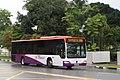 Citaro in the rain - Flickr - SgTransport.jpg