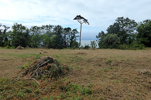 Cleared ground facing the sea in Worlebury Camp