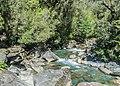 Cleddau River NZ 02.jpg