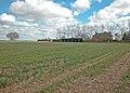 Clifton Road farmland - geograph.org.uk - 884971.jpg